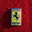 Vintage Ferrari Emblem by Jill Reger