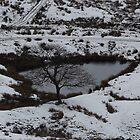 Winter Lake by jorafc