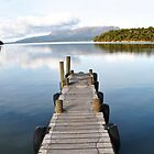 Lake Tarawera - iphone by mattslinn