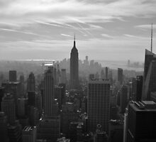 New York by Sarah Haswell