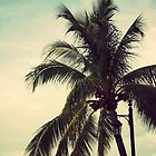 Palms  by XxJasonMichaelx