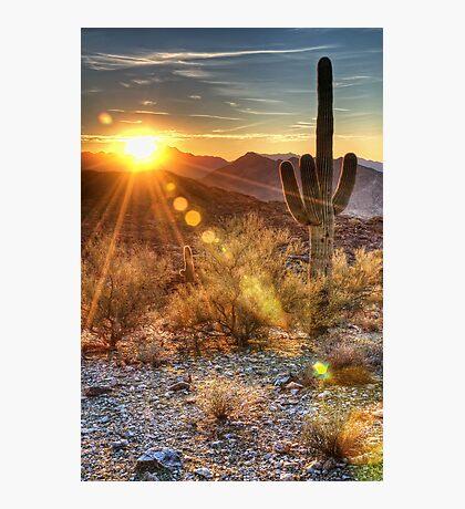 Desert Sunset Photographic Print