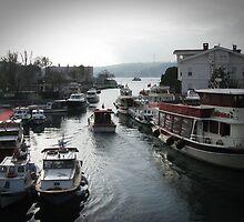 Göksu,Istanbul by rasim1