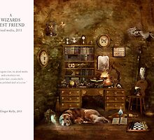 10 2012 A Wizard's Best Friend by gingerkelly