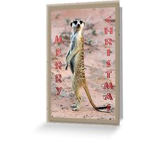 Meerkat Sentinel - Christmas Card Greeting Card