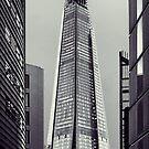 Shard of Glass by Jasna