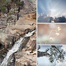 Woolshed Falls by Linda Lees