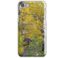 Autumn Arrives  iPhone Case/Skin