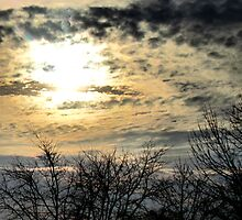 Winter skies by Shawty's Photography