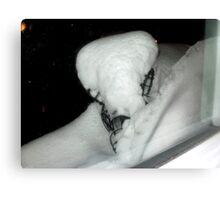 Snow Sculpture  in Nature Canvas Print