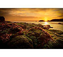 Bushranger's Bay, Cape Schanck Photographic Print