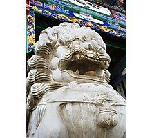 Temple lion 1 Photographic Print