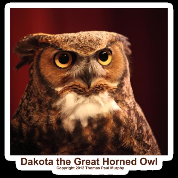 Dakota the Survivor by Thomas Murphy
