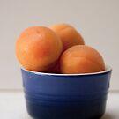 Apricots by Hege Nolan