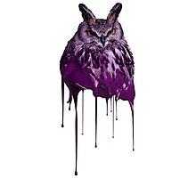 Future and Drake Owl Photographic Print