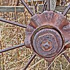 Wagon Wheel Hub by Keri Harrish