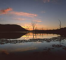"""Live"" ∞ Lake Somerset, QLD - Australia by Jason Asher"