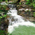 Spring Waterfall by Carolyn Wright