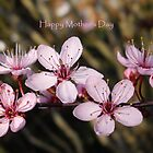 Happy Mother's Day by Sally J Hunter