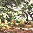 The Old Burying Ground by Lea  Weikert