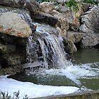 Waterfall, Montserrat  by Sue Ballyn