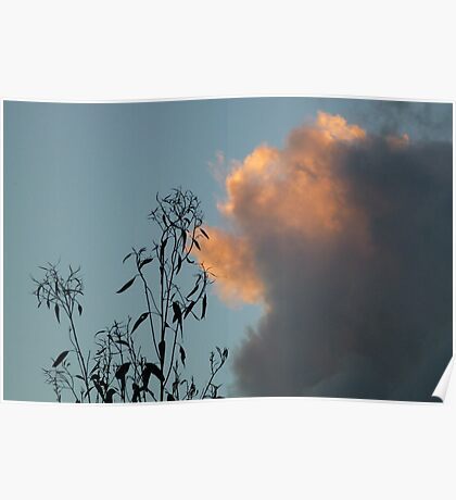 Sky Contrasts Poster