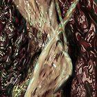 Organic Silk. by carboneye