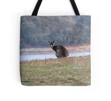Curious Kangaroo at Wyangala Tote Bag