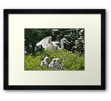 Mother Nature Has A Way Framed Print