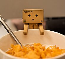Danbo is hungry by the-sandman
