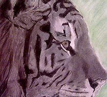 Tiger by DianeL