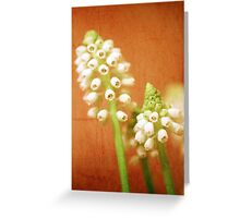 Textured Muscari Greeting Card
