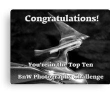 Challenge Top Ten Banner - BnW Photography Canvas Print