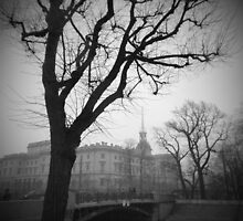 The castle by Dmitry Semenov
