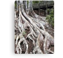 ROOTS 5 Canvas Print