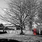 The Village Green at Cold Kirby by redown