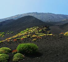 Volcanic Ash on Mt. Etna by bball4jules