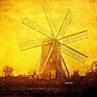 Windmill by kailani carlson