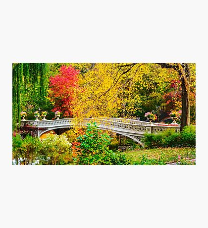 Autumn in Central Park, Study 1 Photographic Print