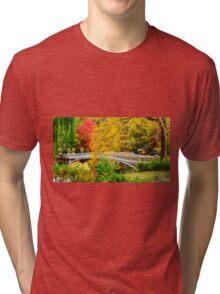 Autumn in Central Park, Study 1 Tri-blend T-Shirt
