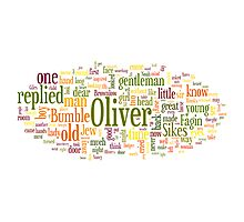 The Adventures of Oliver Twist Photographic Print