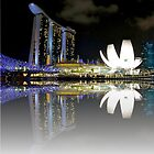 Singapore by Fern Blacker