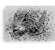 Rest Before The Hunt Canvas Print
