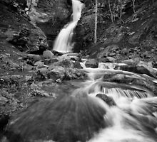 Cathedral Falls BW by LeeAnne Emrick