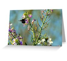Mr. Bumble Bee Greeting Card