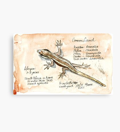 African Striped Skink - Not so easy! Canvas Print
