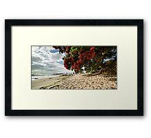 Mount Mauao Pohutukawa Summer Framed Print