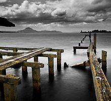 Tokaanu Deadwood Wharf by Ken Wright