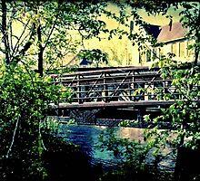 Oak Leaf Bridge © by Dawn M. Becker