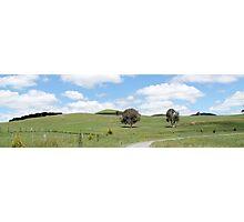 Blayney Wind Farm in NSW Photographic Print
